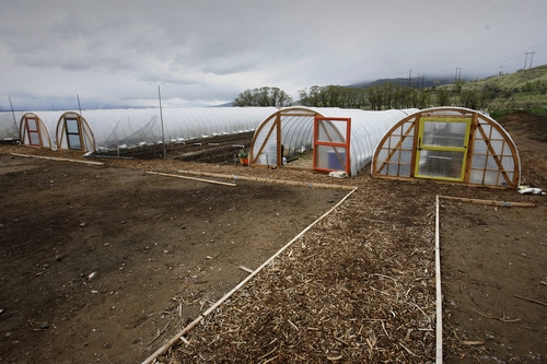 Rick Egan  | The Salt Lake Tribune  La Nay Ferme, a farm in Provo, uses