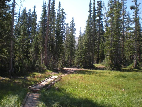 Wooden foot bridges mark the Fehr Lake Trail in the Uinta Mountains. Courtesy Brook Osterland