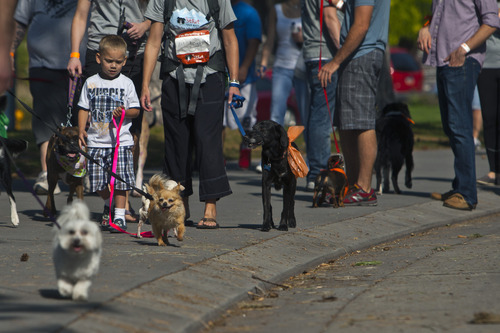 Chris Detrick  |  The Salt Lake Tribune Participants and their dogs walk around Liberty Park during Best Friends Animal Society's Annual Strut Your Mutt Saturday September 22, 2012.