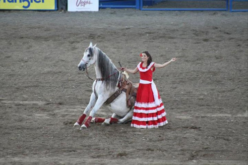Photo courtesy of Fiesta Mexicana One performer in Escaramuzas Charra La Potosina, which will perform this month at the Utah State Fair, waves to a crowd after enticing her horse to take a seat in a event showcasing traditional horsemanship skills.