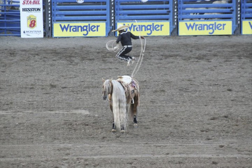 Photo courtesy of Fiesta Mexicana Tomas Garcilazo leaps above his horse while doing a rope trick, displaying his skills as a third generation Charro. Garcilazo, who has performed throughout the world, will be a featured performer in the Fiesta Mexicana at the Utah State Fair.