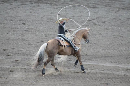 Photo courtesy of Fiesta Mexicana Known as The Charro, Tomas Garcilazo will bring his show mixing equal parts horsemanship and rope artistry to the Utah State Fair this month as part of Fiesta Mexicana.