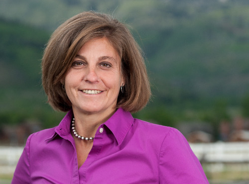 Donna McAleer is the Democratic nominee in Utah's 1st Congressional District. She faces Rep. Rob Bishop in the November election.  Courtesy image