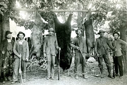 A group of hunters with 2 deer and a bear in American Fork Canyon. Undated.