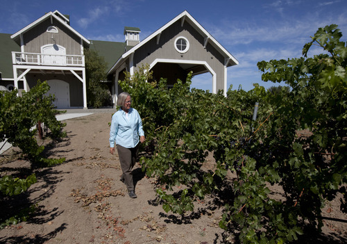 In this photo taken Thursday, Aug. 9, 2012, winemaker Cathy Corison walks through a vineyard at Corison Winery in St. Helena, Calif. Research by Santa Clara University professors Lucia Albino Gilbert and John Gilbert found that women tend to be more highly acclaimed than their male counterparts as winemakers. (AP Photo/Eric Risberg)