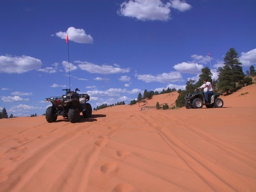 Tribune file photo | Kane County is opposed to a U.S. Fish and Wildlife proposal to designate 2,200 acres of the Coral Pink Sand Dunes as critical habitat for the tiger beetle species that lives there, saying the designation will adversely impact tourism fueled by dune riding.