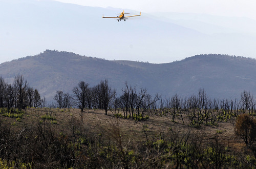 Al Hartmann  |  The Salt Lake Tribune Native and non-native seed mixture is spread by plane across  areas burned by this summer's Wood Hollow Fire near Mount Pleasant. The seeds will help with erssion problems and provide food for wildlife as the ground heals.