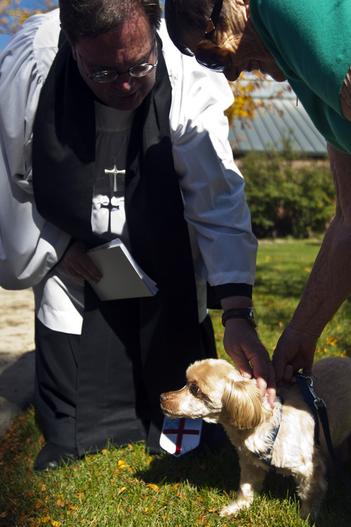 Chris Detrick  |  The Salt Lake Tribune Priest Associate Steve Andersen blesses Stubby, 14, of Centerville, as owner Nona Swenson watches during the Blessing of the Beasts at the Episcopal Church of the Resurrection in Centerville Saturday October 6, 2012. This annual event was a continuation of the commemoration of St. Francis of Assisi and his love of all creatures.