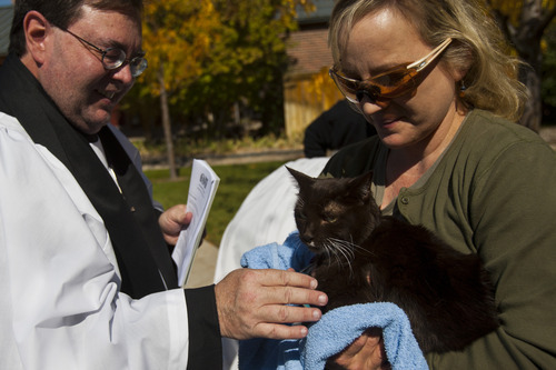 Chris Detrick  |  The Salt Lake Tribune Priest Associate Steve Andersen blesses a cat during the Blessing of the Beasts at the Episcopal Church of the Resurrection in Centerville Saturday October 6, 2012. This annual event was a continuation of the commemoration of St. Francis of Assisi and his love of all creatures.