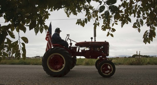Leah Hogsten     The Salt Lake Tribune John Green follows along as members of the Great Basin Antique Machinery Branch 95 parade their antique tractors throughout West Haven on their annual fun run Saturday, October 13, 2012 in West Haven.