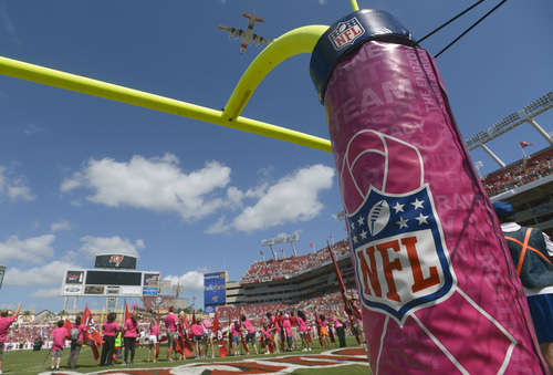 Breast cancer survivors and their families wave and cheer during Breast Cancer Awareness month as a military fly over takes place at Raymond James Stadium prior to an NFL football game between the Tampa Bay Buccaneers and the Kansas City Chiefs, Sunday, Oct. 14, 2012, in Tampa, Fla. (AP Photo/Phelan M. Ebenhack)