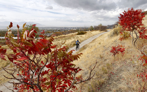 Al Hartmann  |  The Salt Lake Tribune A bicyclist gets in a ride along the pipeline trail above the University of Utah on Monday, Oct. 22 as a storm begins to move into the Salt Lake Valley.  Those colorful leaves may be down soon as the wind picks up.