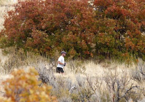 Al Hartmann  |  The Salt Lake Tribune A runner gets a workout in along the pipeline trail above the University of Utah on Monday, Oct. 22 as a storm begins to move in from the west.   Those colorful leaves may be down soon as the wind picks up.