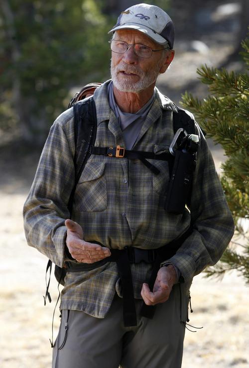 Rick Egan  |  The Salt Lake Tribune    Entomologist Jesse Logan, surveys a whitebark pine forest, on Blue Ridge in the Wind River Range of Wyoming, Monday, October 1, 2012.