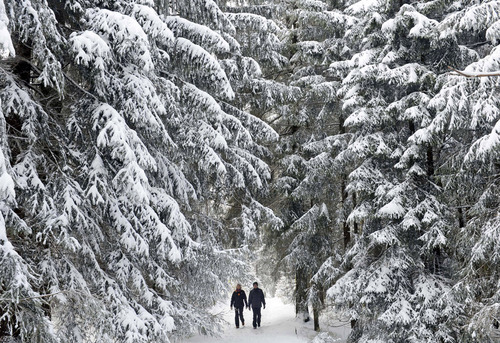 People walk in the Thuringian Forest near Oberhof, central Germany, Sunday, Oct. 28, 2012. Large parts of Germany were hit by heavy rain, snowfalls and stormy wind. (AP Photo/Jens Meyer)
