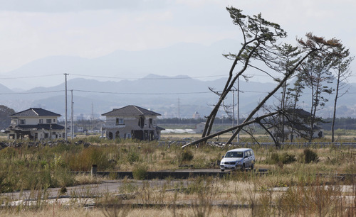 In this Oct. 9, 2012 photo, a car is parked by leaning pine trees, part of the windbreak forest severely damaged by the March 11, 2011 earthquake and tsunami, near the Arahama Beach in Sendai, northeastern Japan. Japan's accounting of its budget for reconstruction from the disasters is crammed with spending on unrelated projects, while all along Japan's northeastern coast, dozens of communities remain uncertain of whether, when and how they will rebuild. (AP Photo/Koji Sasahara)
