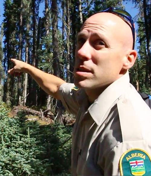Rick Egan  | The Salt Lake Tribune   Forest Health Officer, Dale Thomas, Lesser Slave Area, Tuesday, September 18, 2012.
