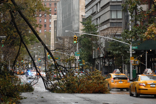 Trees are downed from Sandy on the Upper West Side of New York's Manhattan borough on Tuesday, Oct. 30, 2012. Sandy, the storm that made landfall Monday, caused multiple fatalities, halted mass transit and cut power to more than 6 million homes and businesses. (AP Photo/The Record of Bergen County, Carmine Galasso) ONLINE OUT; MAGS OUT; TV OUT; INTERNET OUT;  NO ARCHIVING; MANDATORY CREDIT