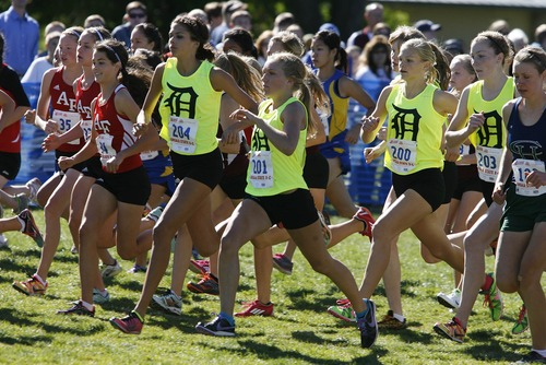 Paul Fraughton | Salt Lake Tribune Shea Martinez, No. 204, and the Davis girls' team starts the 5A state cross-country race last month at Sugar House Park.