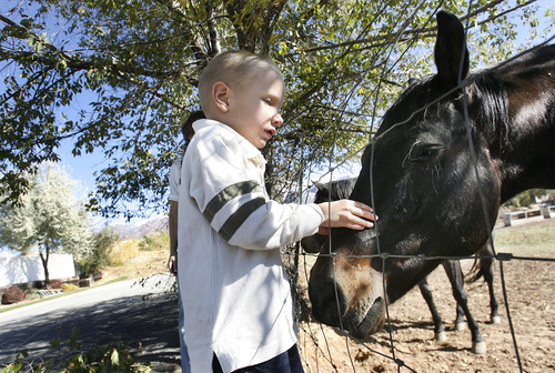 Scott Sommerdorf  |  The Salt Lake Tribune               Nicole VanBuskirk's 6-year-old son, Austin, who is autistic, pets a horse on a visit to a ranch near their Layton home. Austin works with Breanne Berg who teaches an autism therapy like the one  covered in the state-funded pilot, Monday, October 29, 2012.