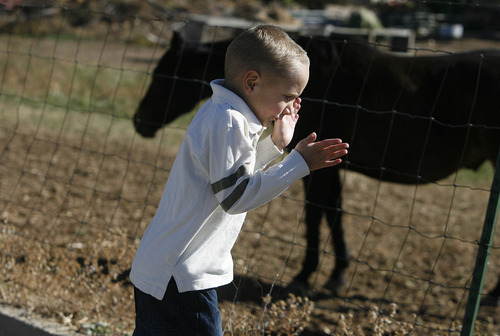 Scott Sommerdorf  |  The Salt Lake Tribune               Nicole VanBuskirk's 6-year-old son, Austin, visiting horses nearby his Layton neighborhood, sometimes jumps and claps his hands when excited. Austin, who is autistic, works with Breanne Berg who teaches an autism therapy like the one covered in the state-funded pilot, Monday, October 29, 2012.