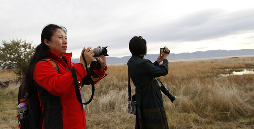 Al Hartmann  |  The Salt Lake Tribune Members of a Chinese artist group visit Antelope Island Thursday Novmeber 1 to photograph and paint scenes from around Garr Ranch at the south end of the island.  The Division of Utah State Parks on behalf of Antelope Island is signing a sister/marketing relationship with the Jinshanling section of the Great Wall in China.