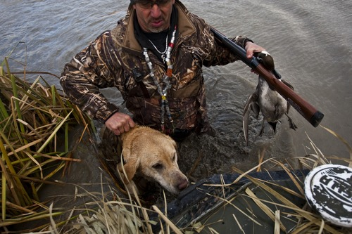 Chris Detrick  |  The Salt Lake Tribune  Carl Taylor helps his dog JB get back into the boat after shooting a pintail duck in Farmington Bay.