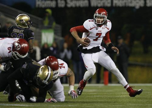 Scott Sommerdorf  |  The Salt Lake Tribune               Utah QB Travis Wilson scrambles late in the game at Century Link Field in Seattle, Saturday, November 10, 2012.