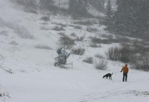 Scott Sommerdorf  |  The Salt Lake Tribune               A man walks his dog through the new snow past snowmaking equipment at Alta Ski Area, Friday, November 8, 2012.