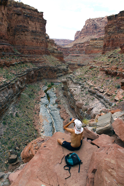 Al Hartmann  |  The Salt Lake Tribune Hiker takes a water break in the cliffs above Dark Canyon.