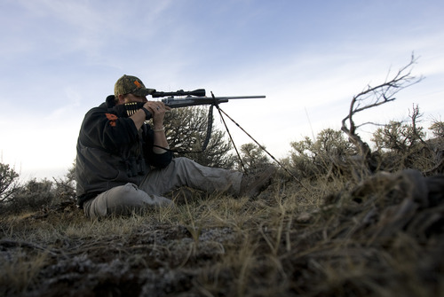 Kim Raff | The Salt Lake Tribune Ace Redhair looks at a buck he considers to shoot through the scope of his rifle during an evening hunt in the Diamond Mountain area outside of Vernal on Oct. 30, 2012. Redhair is a wounded Army veteran who was selected for the first-ever Sgt. Daniel D. Gurr Foundation's deer and elk hunt. David Gurr's son, Daniel, died in Afghanistan in August 2011, and he and his wife, Dana, have created a foundation that takes wounded veterans hunting.