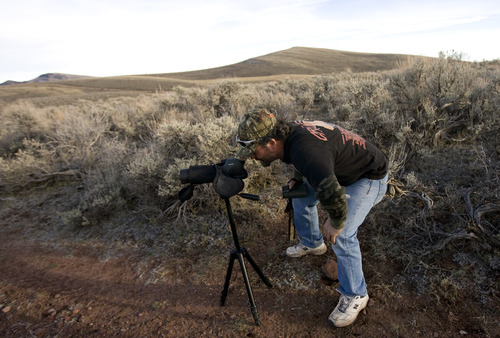 Kim Raff | The Salt Lake Tribune David Gurr looks at a buck he and others have found to determine if they should  consider shooting it during an evening hunt in the Diamond Mountain area outside of Vernal.
