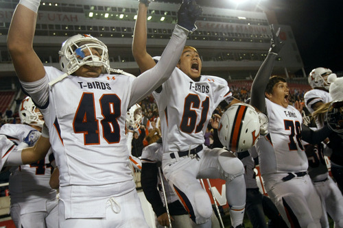 Chris Detrick  |  The Salt Lake Tribune Timpview's Chandler Wade (48) Timpview's Zealand Leauanae (61) and Timpview's Brian Brinton (78) celebrate after the 4A championship game at Rice-Eccles Stadium Friday November 16, 2012. Timpview defeated Mountain Crest 38-31