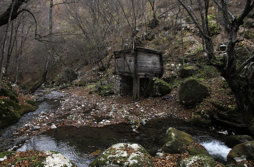 "In this Nov. 30, 2012 photo is an old watermill located on the Rogacica river, believed to have been Sava Savanovic's home,  in the village of Zarozje, near the Serbian town of Bajina Basta. Get your garlic, wooden crosses and stakes ready: a bloodsucking vampire is on the loose.  Or so say villagers in the tiny western Serbian hamlet of Zarozje, nestled between the lush green mountain slopes and spooky thick forests. Rumors that a legendary vampire ghost has returned are spreading panic throughout the town. An official warning telling villagers to put garlic in their pockets and place wooden crosses in each of their rooms, the tools that should keep away the vampires  did nothing but fuel the fear.  ""The story of Sava Savanovic is a legend, but strange things did occur in these parts back in the old days,"" said 55-year-old housewife Milka Prokic, holding a string of onions in one hand and a large wooden stake in another.  ""The story goes that back in the old days, vampires would roam around and show themselves in different forms, as a butterfly, or as a hay stack, they would change form,"" she said as mist settled on the pristine valley and the full moon appeared in the sky. (AP Photo/Darko Vojinovic)"
