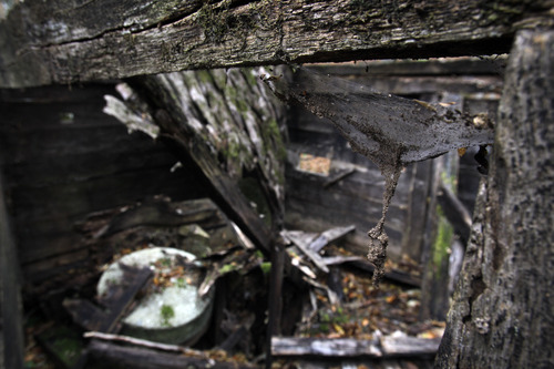 "In this Nov. 30, 2012 photo, the interior of recently collapsed old watermill located on the Rogacica river which was believed to have been Sava Savanovic's home, in the village of Zarozje, near the Serbian town of Bajina Basta. Get your garlic, wooden crosses and stakes ready: a bloodsucking vampire is on the loose.  Or so say villagers in the tiny western Serbian hamlet of Zarozje, nestled between the lush green mountain slopes and spooky thick forests. Rumors that a legendary vampire ghost has returned are spreading panic throughout the town. An official warning telling villagers to put garlic in their pockets and place wooden crosses in each of their rooms, the tools that should keep away the vampires  did nothing but fuel the fear. ""The story of Sava Savanovic is a legend, but strange things did occur in these parts back in the old days,"" said 55-year-old housewife Milka Prokic, holding a string of onions in one hand and a large wooden stake in another.  The story goes that back in the old days, vampires would roam around and show themselves in different forms, as a butterfly, or as a hay stack, they would change form,"" she said as mist settled on the pristine valley and the full moon appeared in the sky. (AP Photo/Darko Vojinovic)"
