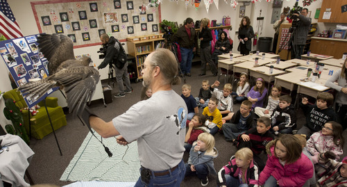 Steve Griffin | The Salt Lake Tribune Buz Marthaler, of the Wildlife Rehabilitation Center of Northern Utah, holds Darth, a Swainson's Hawk, as they visit Riverton Elementary School to honor  Raegan  Fay's third-grade class for their help in the rehabilitation of an eagle that was burned the Saratoga Springs 'Dump Fire' last summer. The students organized a service project for the eagle, named Phoenix, to aid in its recovery. The students basically adopted Phoenix, raised money for its rehabilitation, made a scrapbook to chronicle the eagle's recovery, and built 30 bird perches for other birds injured in the fire. The service project was such a success, the students collected enough supplies to take care of Phoenix for a year. For all their hard work in helping to save the life of this precious eagle, the Wildlife Rehabilitation Center of Northern Utah will surprise Mrs. Fay's class with a thank you party at the Riverton school in Riverton, Utah Monday December 10, 2012.