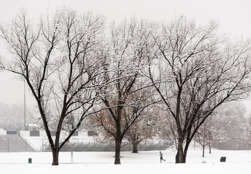Trent Nelson  |  The Salt Lake Tribune A jogger braves a snowy afternoon in Sugar House Park in Salt Lake City, Saturday December 15, 2012.