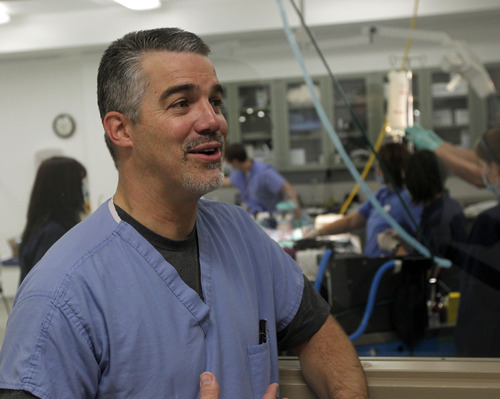 Al Hartmann  |  The Salt Lake Tribune Dr. Richard Orlandi, ear, nose and throat specialist from the University of Utah School of Medicine, speaks outside the operating room after performing an endoscopic procedure on Eli, a black howler monkey who underwent a sinus operation at L.S. Skaggs Animal Health Center at Hogle Zoo Tuesday, Dec. 18. It was his first time operating on a monkey but monkey sinuses are similar to a human's and he said the procedure went well.