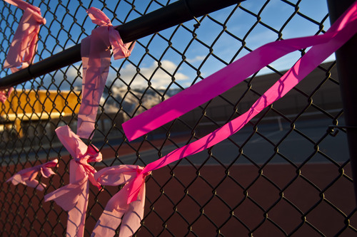 Chris Detrick  |  The Salt Lake Tribune Pink ribbons put up by family, friends and neighbors of the Parker family hang on a fence around Ben Lomond High School in Ogden on Wednesday, Dec. 19, 2012. The pink helps commemorate young Emilie Parker, who was one of the children killed in the shooting at the Connecticut elementary school.