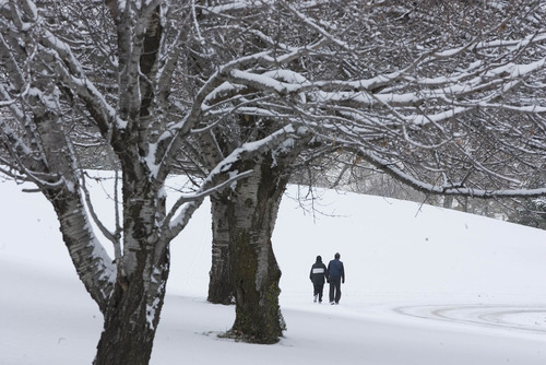 Paul Fraughton  |  The Salt Lake Tribune A couple takes a post-Christmas walk through a snow covered  Sugarhouse Park.  Wednesday, December 26, 2012