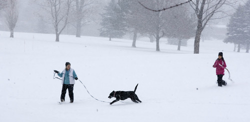 Paul Fraughton     The Salt Lake Tribune Carol Bruggers, left, and her daughter Claire, age 11, take their black Labrador retriever, Jazzy, for a romp in the snow at Bonneville Golf Course.  Wednesday, December 26, 2012