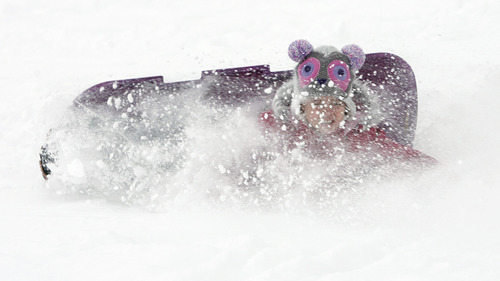 Rick Egan  | The Salt Lake Tribune   Eight-year-old Audrey Owens takes a tumble while sledding on a hill near Mueller Park Jr. High in Bountiful on Friday, Dec. 28, 2012.