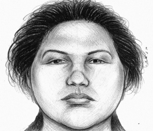 In this image provided by the New York City Police Department, a composite sketch showing the woman believed to have pushed a man to his death in front of a subway train on Thursday, Dec. 27, 2012 is shown. Police arrested Erica Menendez on Saturday, Dec. 29, 2012, after a passer-by on a street noticed she resembled the woman seen in a surveillance video. The attack was the second time this month that a man was pushed to his death in a city subway station. (AP Photo/New York City Police Department)