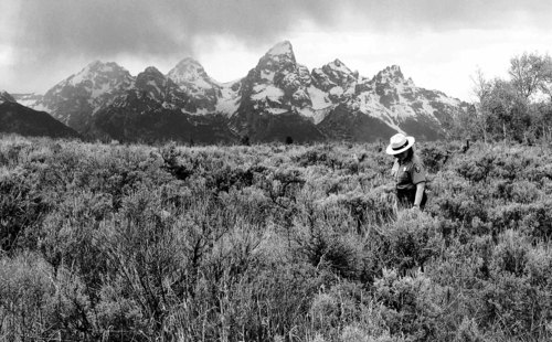This June 24, 2010 photo shows Grand Teton National Park spokeswoman Jackie Skaggs strolling across land the state of Wyoming owns inside the park. Wyoming is threatening to auction off the land if the federal government doesn't agree to trade land, minerals or mineral royalties for the property. (AP Photo/Mead Gruver)