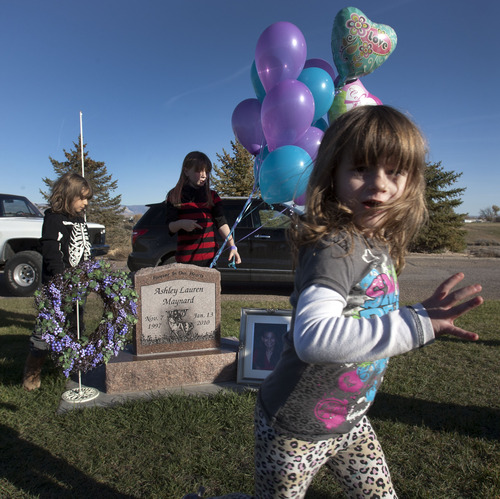 Steve Griffin    The Salt Lake Tribune LuLu Badger runs past the grave of Ashley Maynard at the Vernal Cemetery in Vernal, Utah Saturday October 27, 2012. Maynard, 12, died in 2010. Her family donated her organs, and her liver saved LuLu's life. The two families visited a corn maze in Bluebell and Ashley's grave in Vernal.