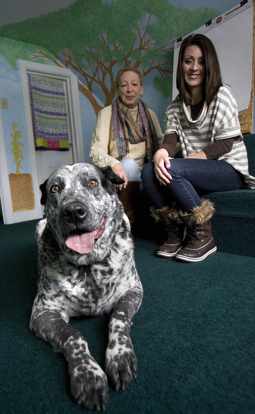 """Paul Fraughton     The Salt Lake Tribune Bruno, a 13-year-old therapy dog, sits in an interview room at Tooele County's Children's Justice Center with center executive director Carolyn Jensen, left, and Sylvia Allred, a child advocate. Bruno's job at the center is to comfort children who are victims of abuse. """"When the children try to answer these hard questions, they start talking to the dogs,"""" Jensen said."""