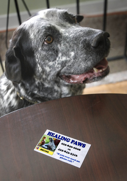 Paul Fraughton     The Salt Lake Tribune Bruno, a 13-year-old therapy dog at The Tooele County Children's Justice Center, sits near one of his business cards. Bruno's job at the center is to comfort children who are victims of abuse.