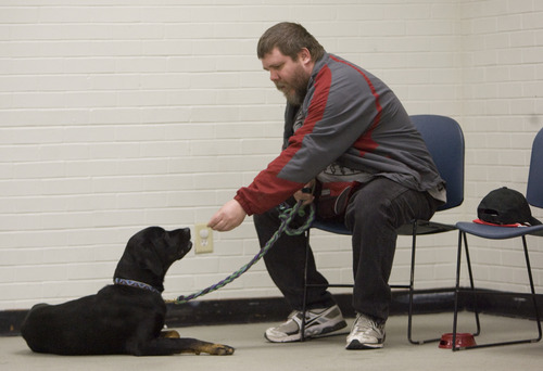 Kim Raff     The Salt Lake Tribune Army veteran Mike Buchanan works with Sergio during a Canines With A Cause class at Northwest Recreation Center in Salt Lake City on December 21, 2012. Canines With A Cause is a non-profit that trains veterans and their dogs.