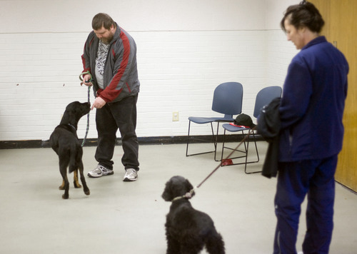 Kim Raff  |  The Salt Lake Tribune Army veteran Mike Buchanan works with Sergio as Renee Olsen, an Army National Guard veteran of Desert Storm, works with her dog, Lucy, during a Canines With A Cause class at Northwest Recreation Center in Salt Lake City on December 21, 2012. Canines With A Cause is a non-profit that trains veterans and their dogs.