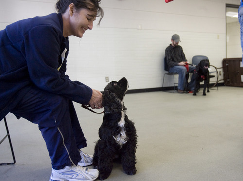 Kim Raff  |  The Salt Lake Tribune Renee Olsen, an Army National Guard veteran of Desert Storm, listens with her dog, Lucy, during a Canines With A Cause class at Northwest Recreation Center in Salt Lake City on December 21, 2012. Canines With A Cause is a non-profit that trains veterans and their dogs.